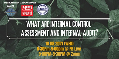 What are Internal Control Assessment and Internal Audit? bilhetes