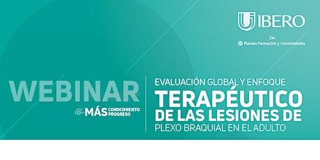Evaluación global y enfoque terapéutico de las lesiones de plexo braquial entradas