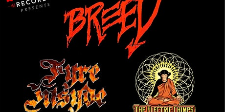 FYRE INSYDE : Special Guests : Electric Chimps & BREED tickets