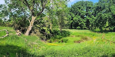 Chester Zoo Estate Invertebrate Recording Day tickets