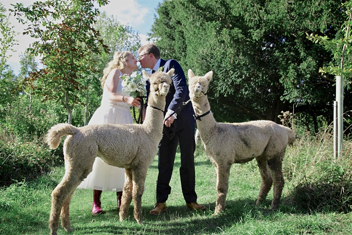 Wedding Showcase Weekend - Charnwood Forest Alpacas image