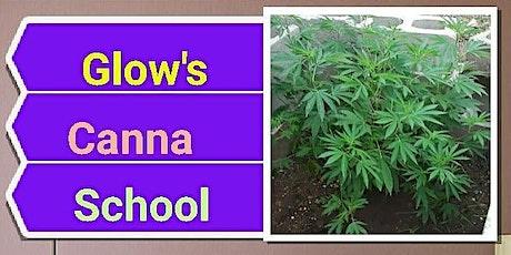GLOWS Grow School tickets