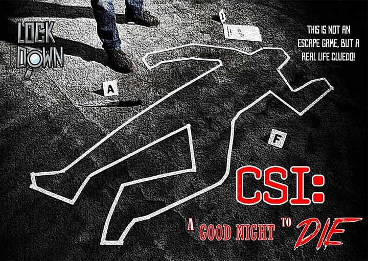 CSI: A Good Night to Die - Online Escape Game image