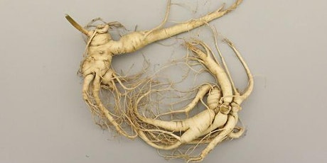 Learn to Grown Ginseng tickets