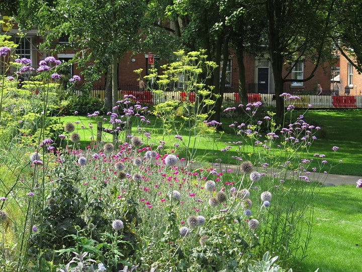 Winckley Square : Gander around the Gardens with the Gardener image