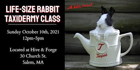 Life-size Rabbit Taxidermy Class tickets