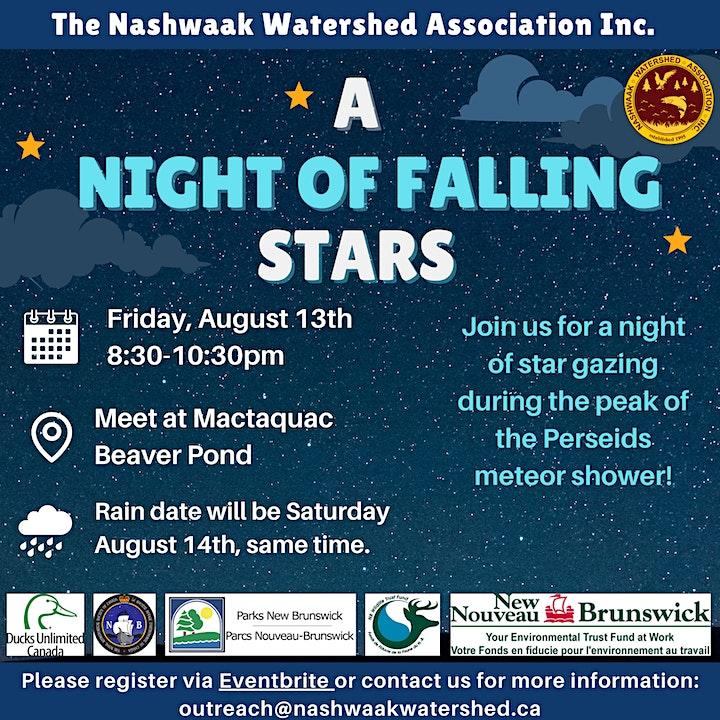 A Night of Falling Stars image