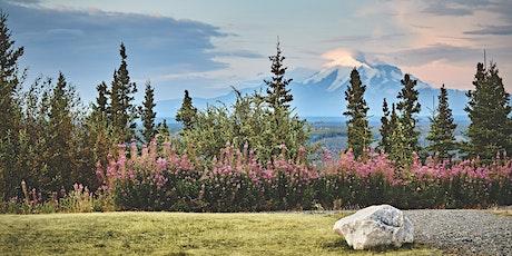 Alaska Cruises Explained - Best Ways to See Alaska tickets