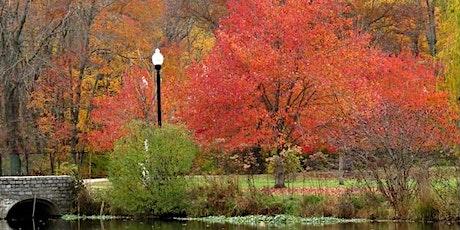 Autumn Birds in Branch Brook Park tickets