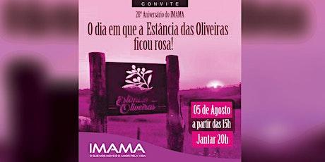 28° Aniversário do Instituto da Mama do Rio Grande do Sul - IMAMA ingressos