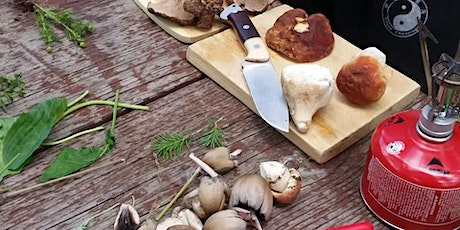 Wildcrafting mushrooms and herbs tickets