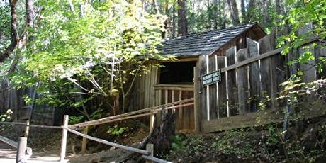 Tours of the Oregon Vortex and the House of Mystery tickets