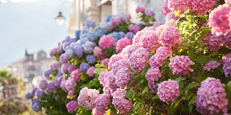 Melinda Myers: Everything You Need to Know About Hydrangeas tickets
