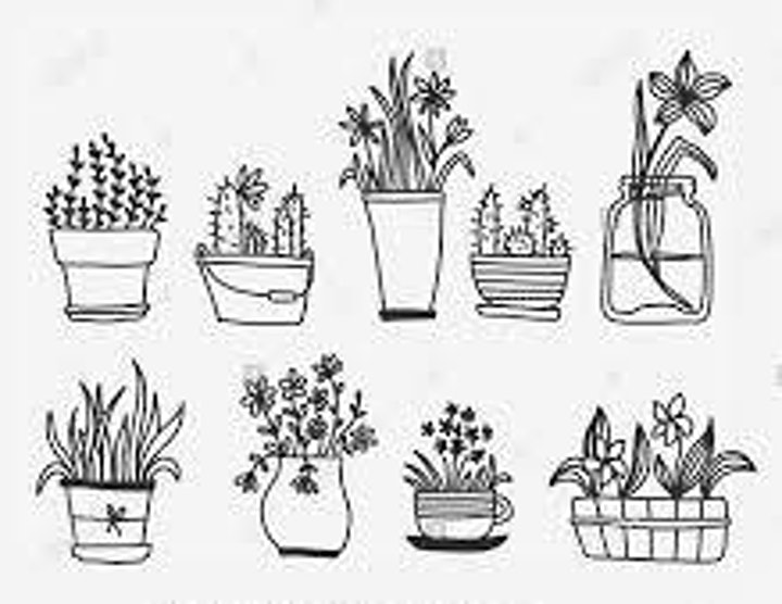 Doodling Plant Vases,  Class for Teens and Adults image