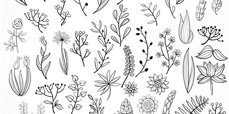 Doodling Botanicals,  Class for Teens and Adults tickets
