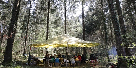 Forest Friday - Jedi Skills, Nature Connection & Bushcraft  8 -14 year olds tickets