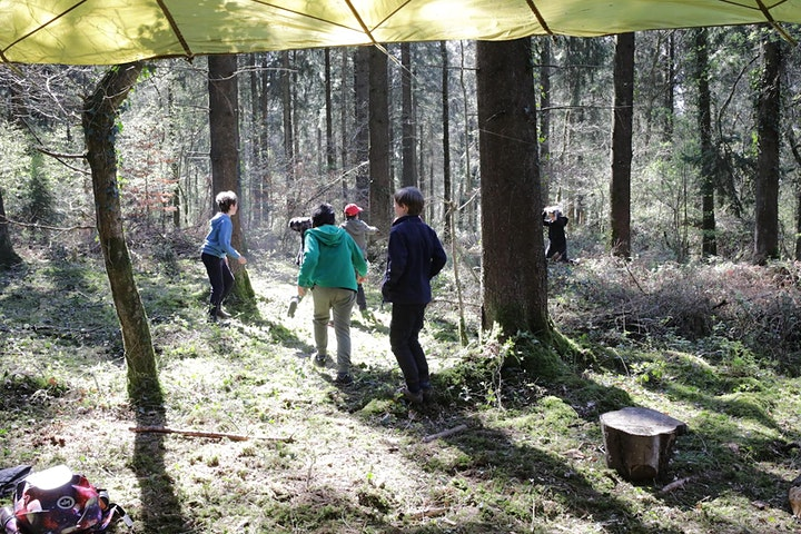 Forest Friday - Jedi Skills, Nature Connection & Bushcraft  8 -14 year olds image