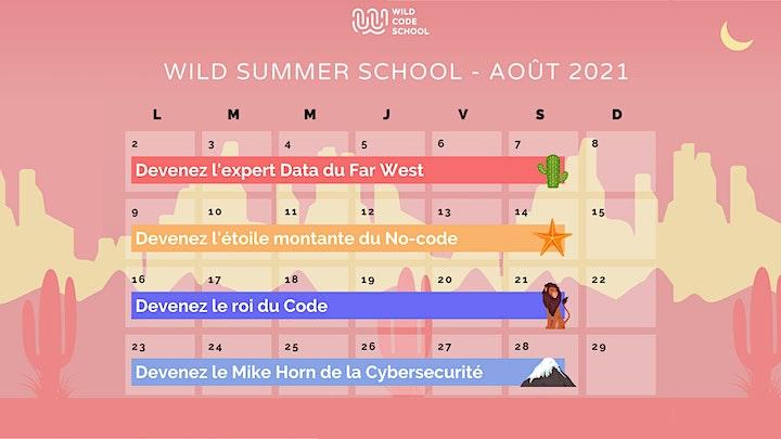 Image pour Wild Summer School - Retours d'expérience sur les formations Data !