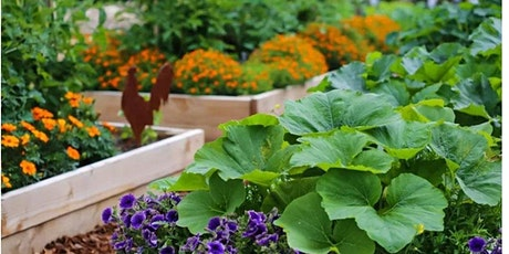 WAA: Managing a small plot & planting for wildlife tickets