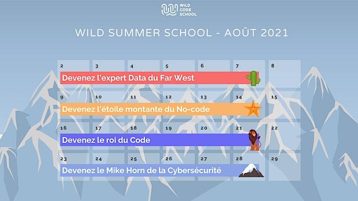 Image pour Wild Summer School - Retours d'expérience sur la formation Cybersécurité !