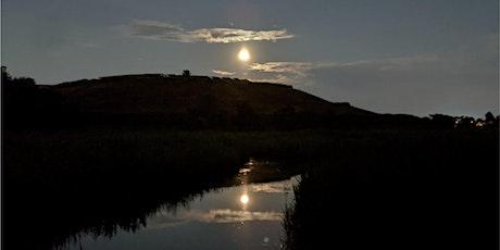 Full Moon Hike at Hawk Rise tickets