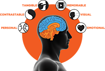 Introduction to NeuroMap® tickets