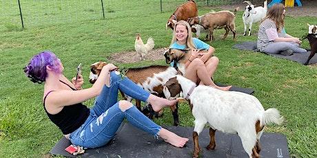 Petting on the Farm! entradas