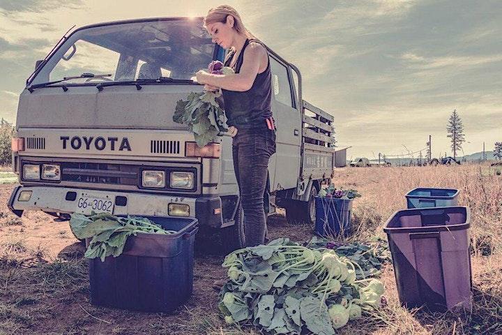 Land Social at Salt & Harrow Farm image