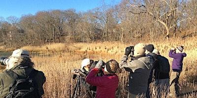 Small Group Birding: Mon, Oct 11, 8:00 am, Rockefeller State Park Preserve
