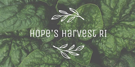 Gleaning with Hope's Harvest RI Friday, August 6th 10 - 12PM tickets