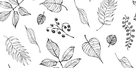 Doodling Leaves,  Class for Teens and Adults tickets