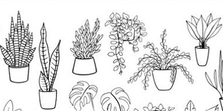 Doodling Potted Plants,  Class for Teens and Adults tickets
