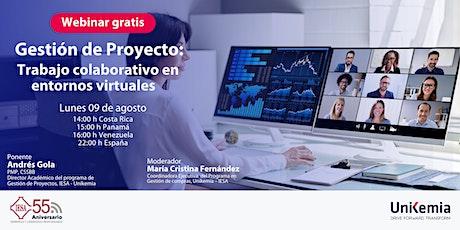 Webinar: Gestión de Proyecto: Trabajo Colaborativo en entornos virtuales entradas