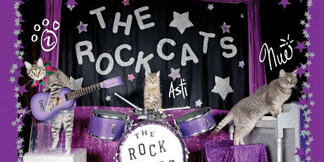 The Amazing Acro-cats Bounce into Baltimore! tickets