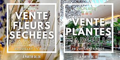 Vente Plantes & Fleurs séchées Marseille billets