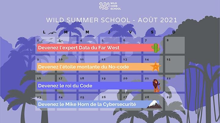 Image pour Wild Summer School - Retours d'expérience sur la formation Code !