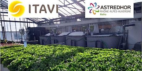Visite station expérimentale ASTREDHOR-RATHO - Aquaponie et autres essais billets