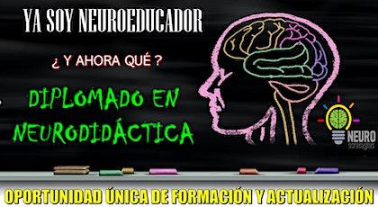 Diplomado Internacional en Neurodidáctica entradas