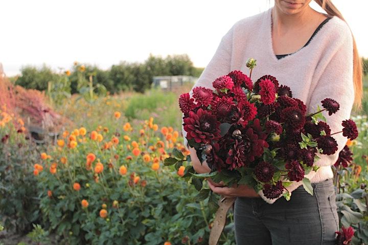 Afbeelding van Bloemen in de zorg: het effect van geuren en kleuren