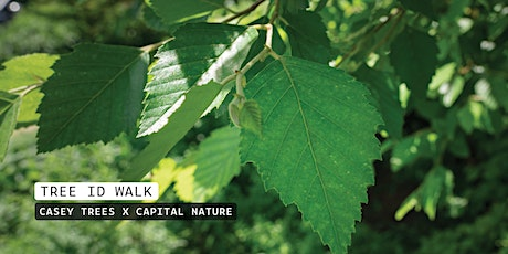 Palisades Tree Walk with Capital Nature tickets