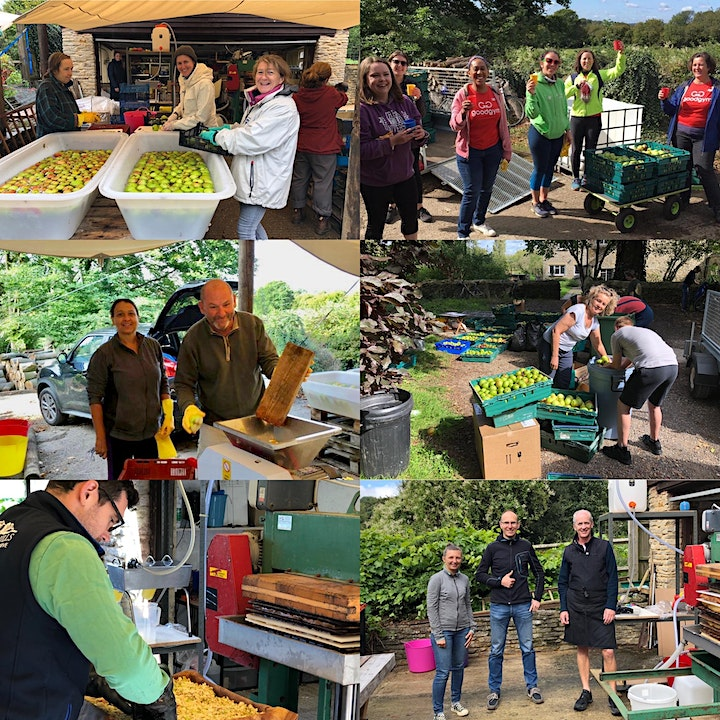 Apple pressing at Oxford Farmhouse - 23rdOct 2021 image