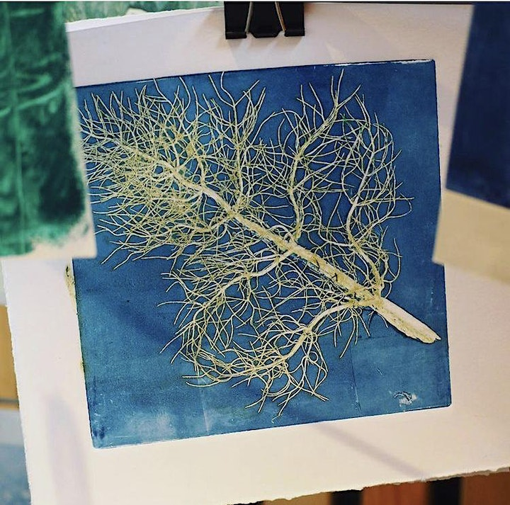 Printing with The People's Herbarium (pm) image