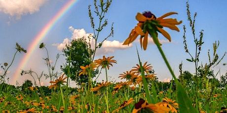 Pre-K Program: Pollinators tickets