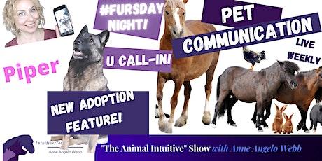 #FurryFursdays Weekly Animal Communication Call-In Show biglietti