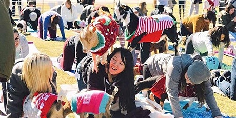Holiday Goat Yoga @ Toyota Music Factory! tickets