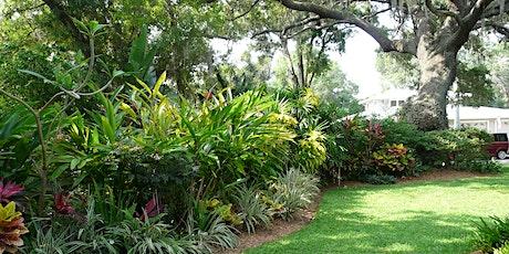 Keeping it Florida-Friendly: Watering, Fertilizer and Mulch (webinar) tickets