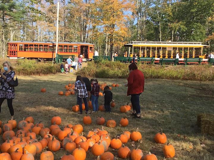 Pumpkin Patch Trolley image