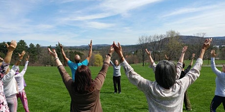 Beginner - Tai Chi Easy™ and Qigong - LIVE Online  - Theme Improve Sleep tickets