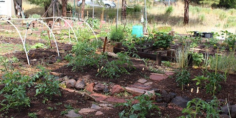 High Altitude Gardening: Fall Planting, Crop Rotation, and Seed Saving tickets
