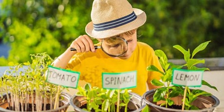 Our Place Art: Health, Nutrition & Gardening for Youth with Disabilities tickets